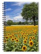 Sunny Sunflowers Spiral Notebook