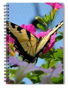 Sunny Tiger Swallowtail  Spiral Notebook