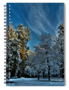Sunny Winter Day Spiral Notebook