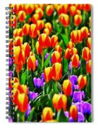 Sunrise And Lavendar Spiral Notebook