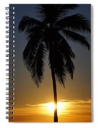 Sunrise And Palm Tree Spiral Notebook