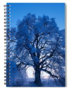 Sunrise And Tree Spiral Notebook