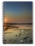 Sunrise And Water Lilies Spiral Notebook