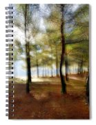 Sunrise At The Magic Forest Spiral Notebook
