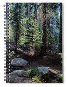 Sunrise Creek Spiral Notebook