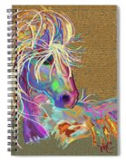 Sunrise Flash Spiral Notebook