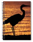 Sunrise Heron Spiral Notebook