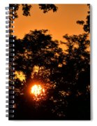 Sunrise In The Forest Spiral Notebook