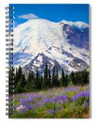 Sunrise Lupines Spiral Notebook