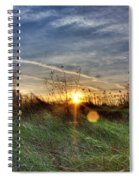 Sunrise Through Grass Spiral Notebook