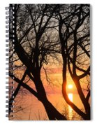 Sunrise Through The Chaos Of Willow Branches Spiral Notebook