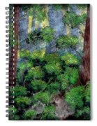 Suns Rays - Forest - Steel Engraving Spiral Notebook