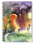 Sunset 49 Spiral Notebook