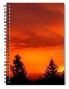 Sunset And Fir Trees Spiral Notebook