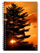 Sunset And Pine Tree  Spiral Notebook