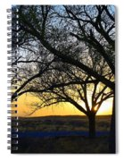 Sunset And Trees Spiral Notebook