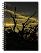 Sunset Avalon Beach Spiral Notebook