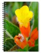 Sunset Bells Flower Spiral Notebook
