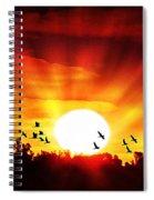 Sunset Birds Spiral Notebook