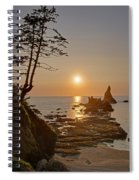 Sunset De Agave Spiral Notebook