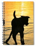 Sunset Dogs  Spiral Notebook