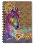 Sunset Flash Spiral Notebook