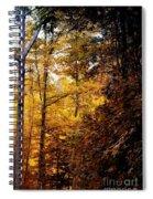 Sunset Forest Spiral Notebook