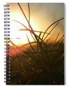 Sunset Grass 1 Spiral Notebook
