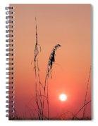 Sunset In Tall Grass Spiral Notebook
