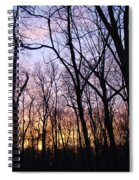 Sunset In The Forest Spiral Notebook