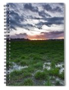 Sunset In The Swamp Spiral Notebook