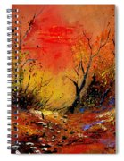 Sunset In The Wood Spiral Notebook