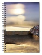 Sunset Shells Spiral Notebook