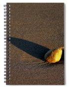 Sunset Stone Spiral Notebook