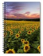 Sunset Sunflowers Spiral Notebook