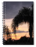 Sunset Through The Palms Spiral Notebook
