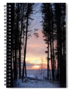 Sunset Through The Pines Spiral Notebook