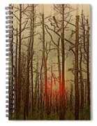 Sunset Thru The Pine Barrens Spiral Notebook