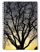 Sunset Tree Spiral Notebook