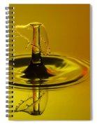 Sunset Umbrella Spiral Notebook