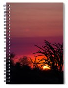 Sunset With Octopus Tree Spiral Notebook