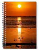 Sunset With The Birds Photo Spiral Notebook