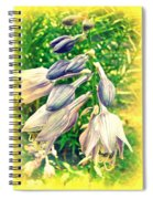 Sunshine And Flowers Spiral Notebook