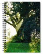 Sunshine And Sunbeams Spiral Notebook