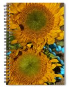 Sunshine And Turquoise  Spiral Notebook