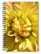 Sunshine Dahlia Spiral Notebook