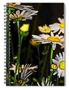 Sunshine Daisies Butter Mellow Spiral Notebook