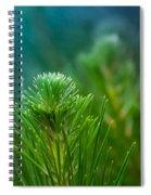 Sunshine Days Spiral Notebook