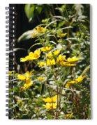 Sunshine Flower 3 Spiral Notebook