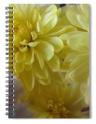 flower - Sunshine in Petals Spiral Notebook